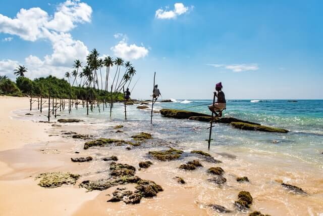 Pescadores zancudos en la playa de Mirissa Sri Lanka